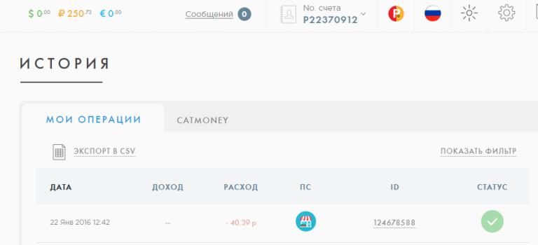 FireShot Screen Capture #003 - 'История I Payeer® E-Wallet' - payeer_com_ru_account_history